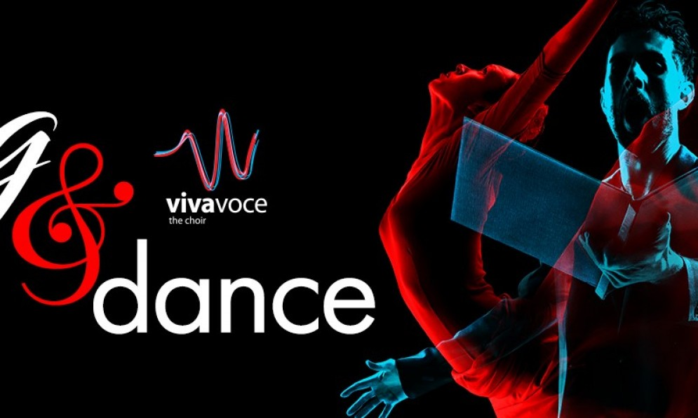 Song and Dance - Viva Voce