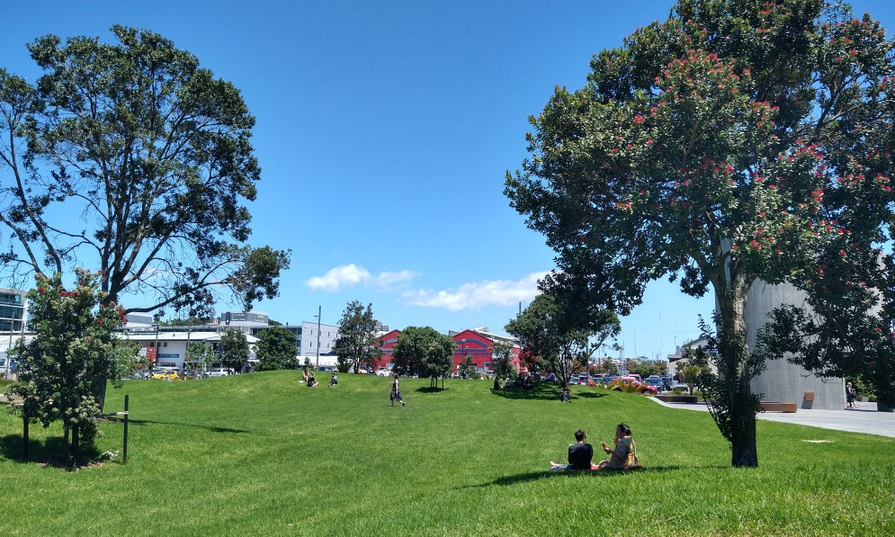 Amey Daldy Park, a grassy green park with pohutukawa trees and people sitting on the ground eating lunch.